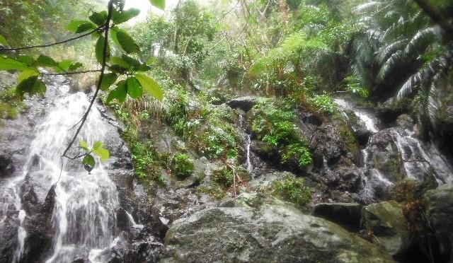 石垣島の大冒険