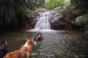愛犬と行く冒険ツアー