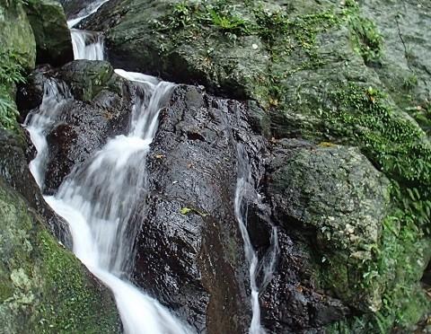 石垣島の秘境サワートレッキングツアー