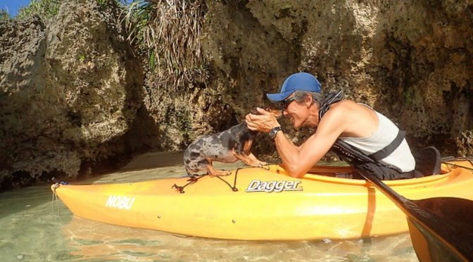 石垣島愛犬と行く無人島探検ツアー